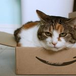 Amazon Studentの魅力 TOEIC本は10%ポイント還元!